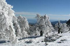 Naturpark Sierra de las Nieves