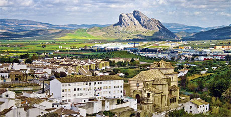 Transfers to Antequera